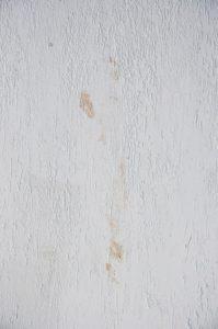 Jak usunąć tłuste plamy na ścianie?